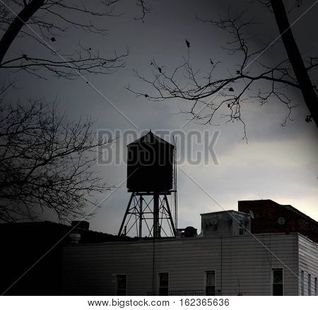 a water tower in brooklyn, new york, at sunset