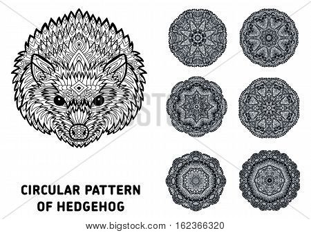 Line art. Element for your design. The head of a hedgehog and patterns of rotational circular drawn from the head of the hedgehog. Monochrome patterns with ink. Coloring page for adults.