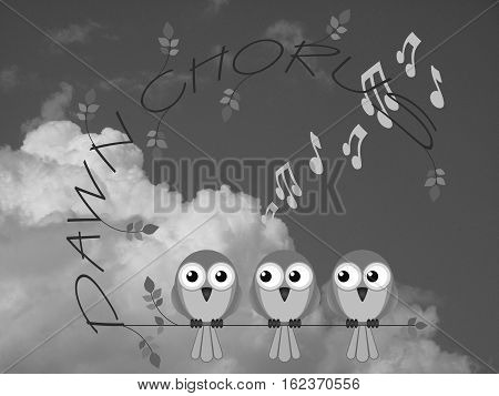 Monochrome bird dawn chorus twig text against a cloudy sky