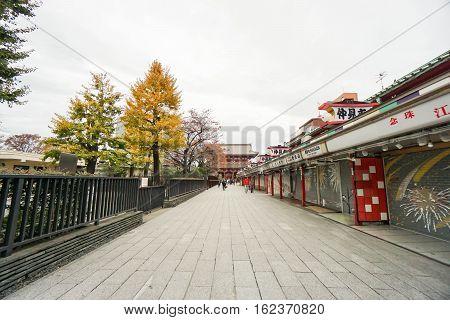 concrete walkway to Sensoji temple in autumn taken in Tokyo Japan on 27 November 2016