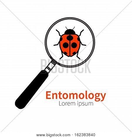 Vector logo icon of entomology biology zoology. Red ladybug beetle bug under magnifying glass. Symbol of research study