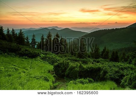 beautiful summer Carpathians landscape, Europe mountains, Europe travel, beauty world