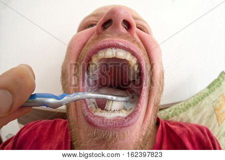 Brushing teeth - close up view with fisheye lens