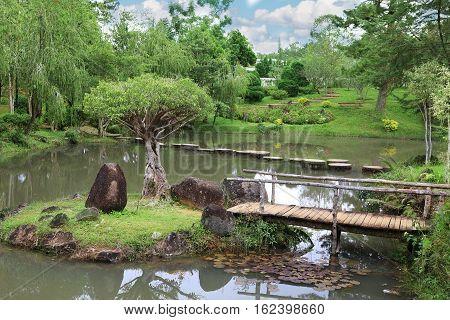 Element of landscape design a wooden bridge on the island in the garden pond.