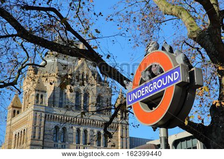 LONDON, UK - NOVEMBER 28, 2016: London Underground sign with pigeons and the Natural History Museum in the background in South Kensington