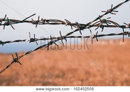 Close up view on sharp strands of barb wire over a blurry rural landscape with copy space conceptual of captivity safety and security being a prisoner or the perimeter agricultural fence