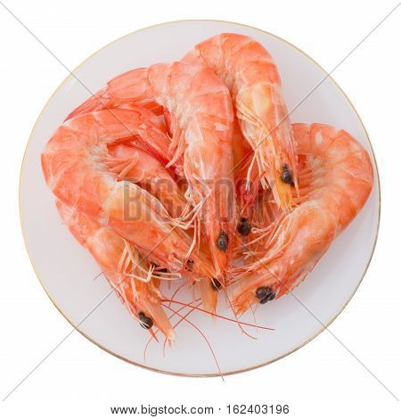 Cuisine and Food Cooked Prawns or Tiger Shrimps in A White Plate.