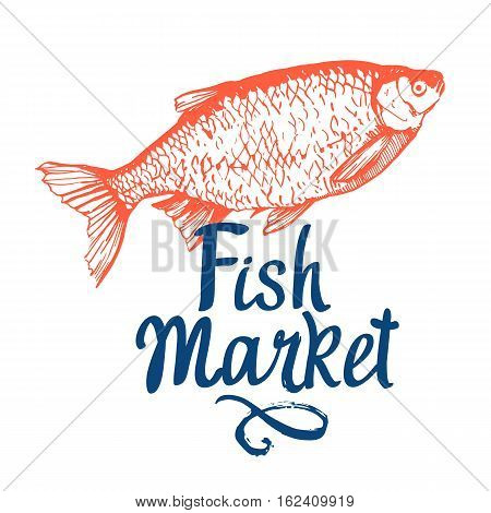 Hand drawn vector illustration with rudd fish. Market. Seafood menu. Brush design elements. Handwritten ink lettering.