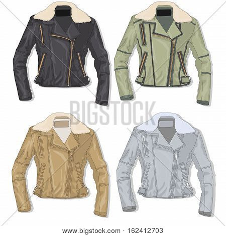 Pilot jacket . Bomber. Isolated illustration .