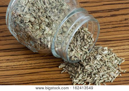 Some Fennel Seeds