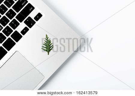 New year pine tree laying on isolated laptop. Space for your text. Space for your text. creative concept