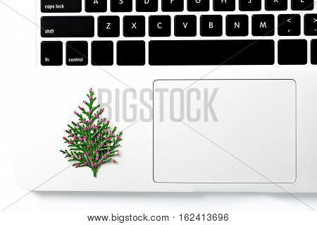 Computer laptop and christmas gift. pine tree with new year decoration. Space for your text. creative concept
