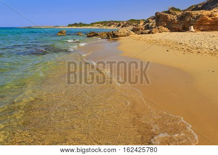 Summer beach.Torre Guaceto Nature Reserve: panoramic view of the coast from the dunes.Apulia,Italy. Mediterranean maquis: a nature sanctuary between the land and the sea.