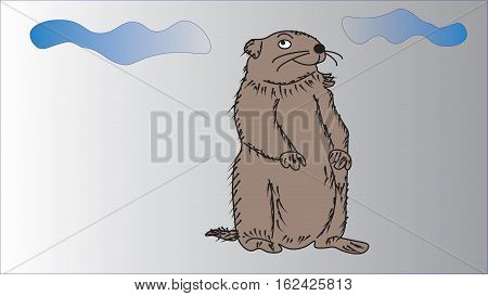 Groundhog Day. Groundhog woke up in cloudy weather.