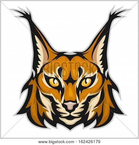 Lynx mascot logo. Head of lynx isolated on white vector illustration.