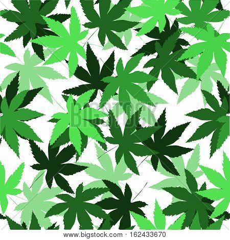 Seamless vector pattern with marijuana leaves, hemp cannabis