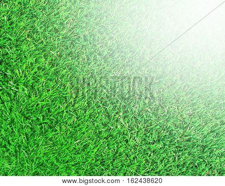 Green background of football field grass texture with sunny vivid yellow rays of first spring sun in shiny day outdoor and white winter ice deep snow, frost, rime and gray hoar outside with blizzard