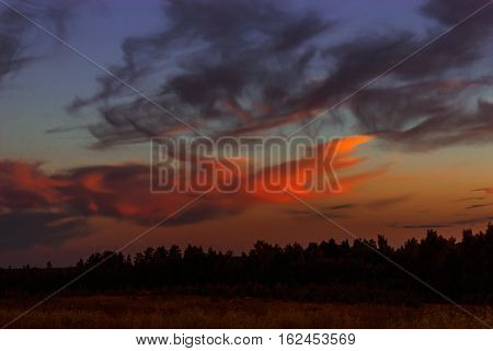 Sunset in the clouds over the dark forest