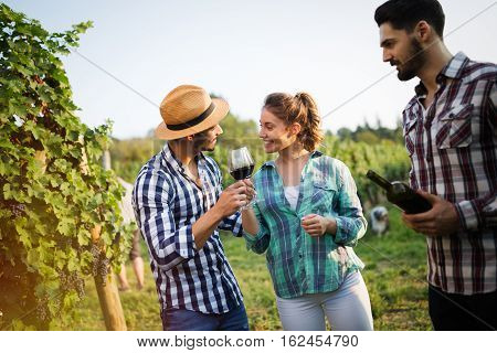 Wine Growers Tasting Wine In Vineyard