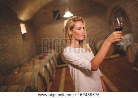 Cute young female tasting wine in winery cellar