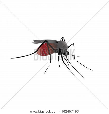 Mosquito insect with blood in the belly. Komar drank blood. Vector drawing