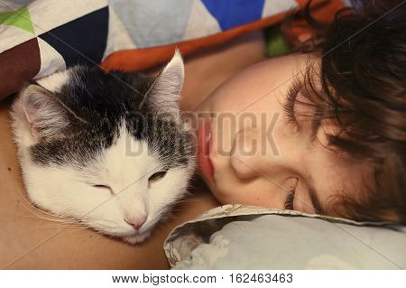 preteen handsome boy with cat hugging in bed close up portrait