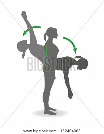 flexion and extension exercises are back for correct posture. vector illustration.