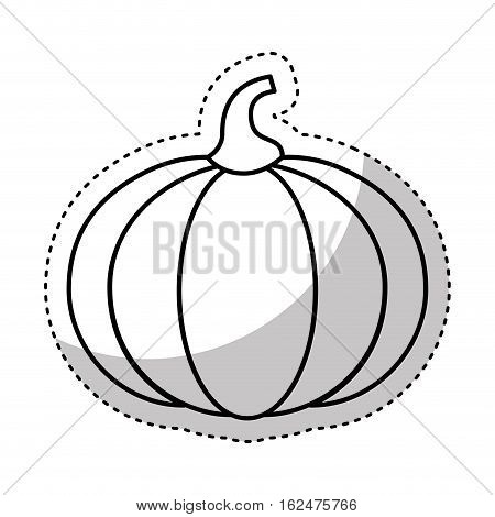 pumpkin fresh vegetable isolated icon vector illustration design