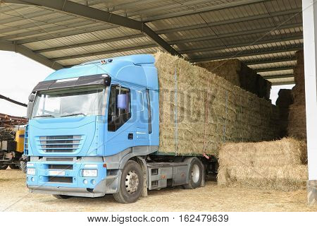 Truck filled with straw in big farm, transportation for farmer