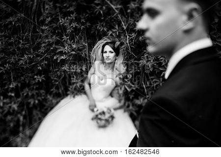 Bride Lies On The Green Hedge Behind A Fiance