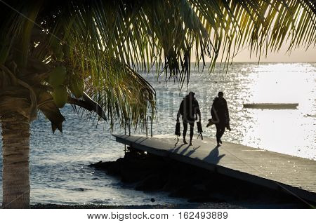 Divers At The Sandy Beach On A Caribbean Island