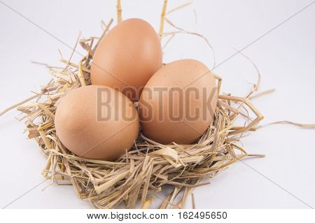 Eggs isolated on the table white background.