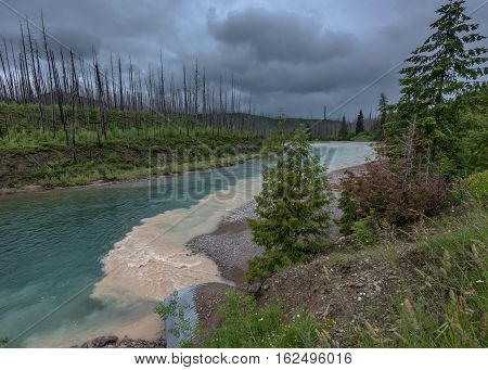 Muddy Water Flows into Clear Blue Creek on Rainy Day in Montana