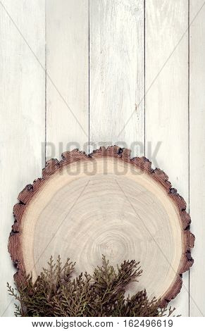 Circle wooden board with leaves of thuja on white wooden table