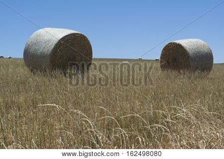 Two Hay Bales In A Field At Kings Beach, Fleurieu Peninsula, South Australia