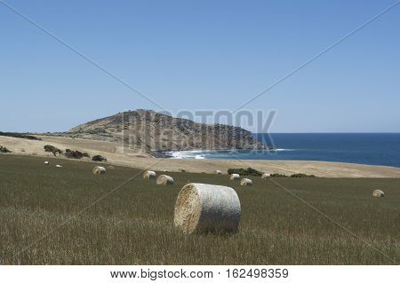 The Bluff And Field Of Hay Bales, Kings Beach, Fleurieu Peninsula, Sa
