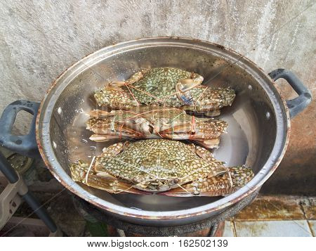 The Steamed crabs in a pan of countryside
