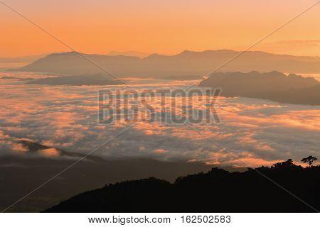 Mountain Mist In Sunrise.