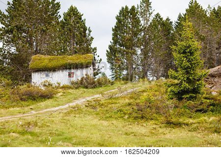 Old Wooden Cabin In Forest Norway