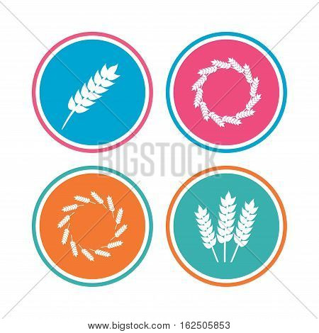 Agricultural icons. Gluten free or No gluten signs. Wreath of Wheat corn symbol. Colored circle buttons. Vector