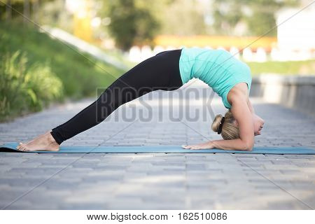 Sporty attractive young woman practicing yoga, staying in Elbow Bridge exercise, Dvi Pada Viparita Dandasana pose, working out, wearing sportswear, outdoor full length, street background