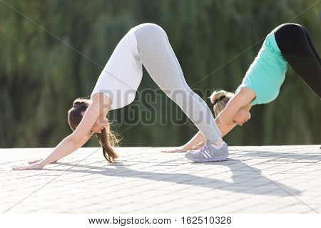 Group of two sporty attractive young women practicing yoga, standing in Downward facing dog exercise, adho mukha svanasana pose, working out, wearing sportswear, outdoor full length, street background