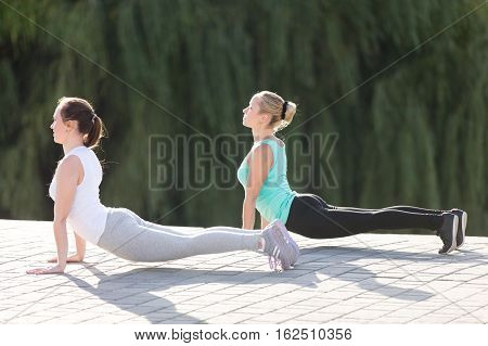 Group of two sporty attractive young women practicing yoga, doing Upward facing dog exercise, Urdhva mukha shvanasana pose, working out, wearing sportswear, outdoor full length, street background
