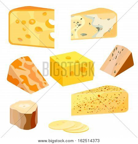 Cheese types. Modern flat style realistic vector illustration icons isolated on white background eps10