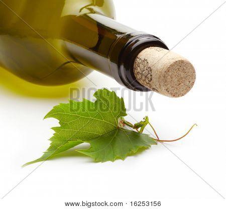 wine bottle and green grape vine