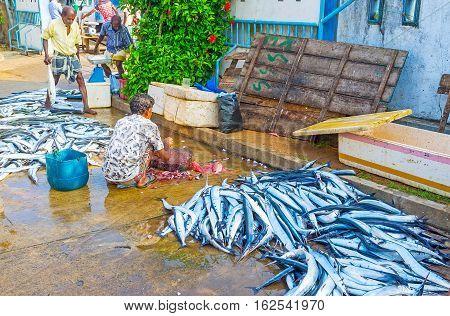 HIKKADUWA SRI LANKA - DECEMBER 5 2016: The fishmonger cuts the fish at the market on December 5 in Hikkaduwa.