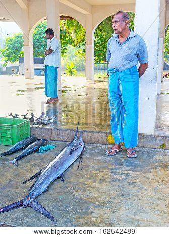 HIKKADUWA SRI LANKA - DECEMBER 5 2016: The fishmonger waits for the clients offering large marlin on December 5 in Hikkaduwa.