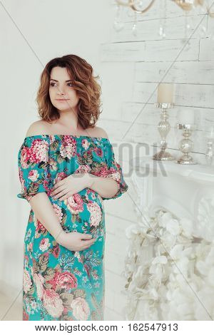Young, extravagant, extraordinary pregnant girl, woman standing near near the fireplace in the flowerpot snake modern dress white background with blue wall picture, embracing the belly.