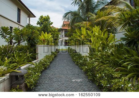 Path To House