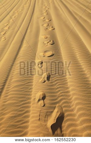 Footprints on hot sand of the desert